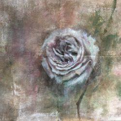 dipinto a mano hand painted botanica rose dipinte rosa dipinta quadro ad olio quadro con rosa